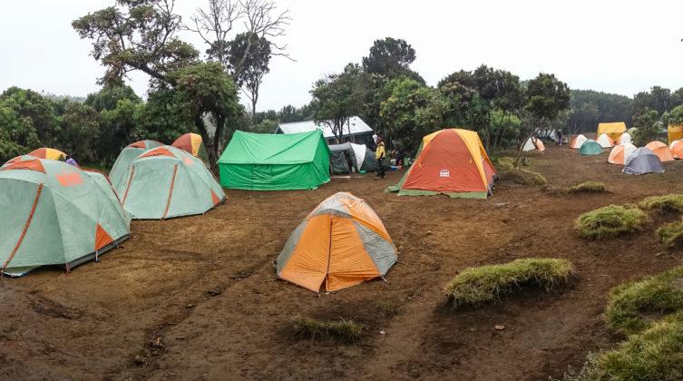 Im Machame Camp ist es meist feucht und nebelig