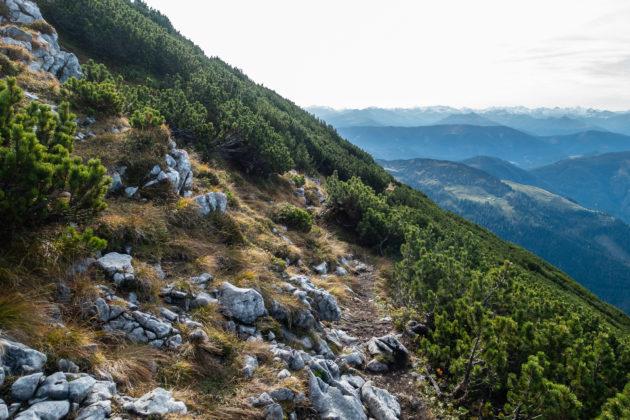 Der (noch) gemütliche Wanderweg zum Steinriesenkogel