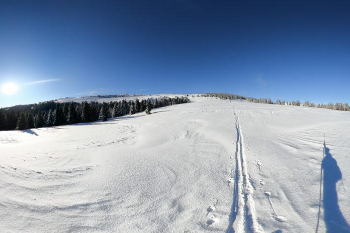 Über der Baumgrenze bei der Skitour auf den Hochwechsel
