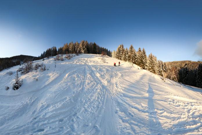 Wiese beim Start von der Skitour auf den Hochwechsel