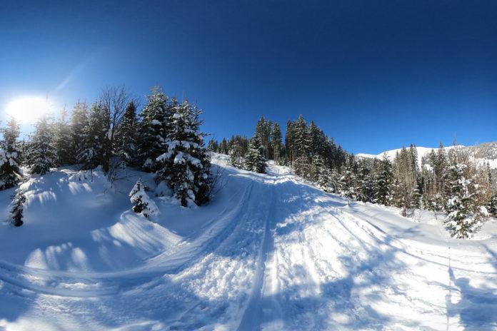 Aufstieg durch den dicht verschneiten Wald auf den Penkkopf